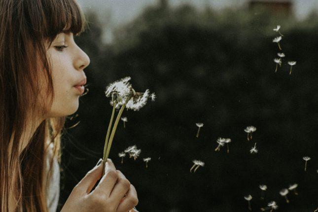 ragazza soffia su un fiore