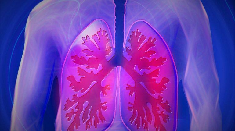 Disegno di polmoni su sfondo blu.