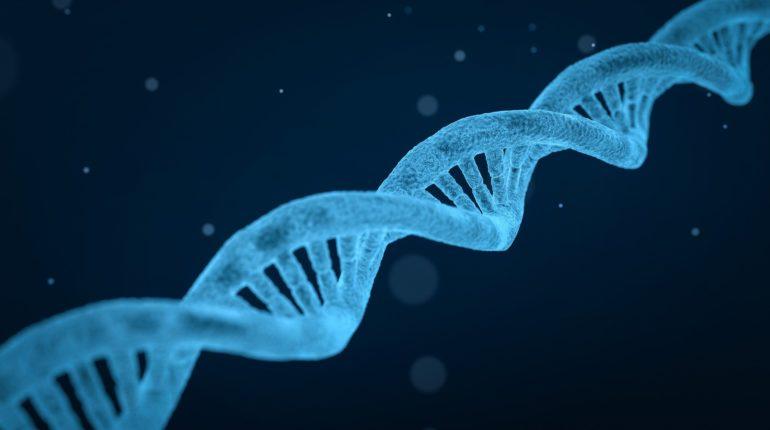 Elica del DNA